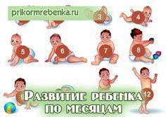 Ребенок до года Развитие по месяцам