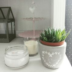 Home decor, succulents and candles