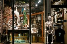 Love this store! The Evolution Store NYC