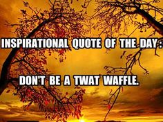 Inspirational quote of the day:  Don't be a twat waffle.
