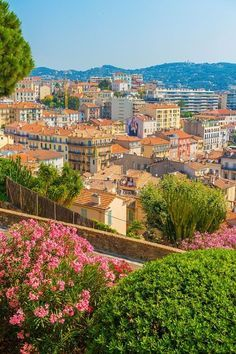 Cannes, French Riviera, France. The best guide to exploring Cannes! Travel #travel