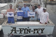 AWESOME #tbt! The day the Wills group released a Grand Slam Blue Marlin, Striped and 15 Sailfish!!!