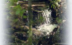 Eau minérale naturelle pure - Mont Roucous eau faiblement minéralisée