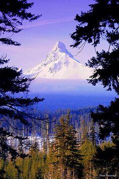 Mt. Washington, Oregon, USA