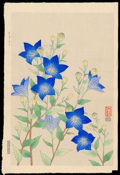 """Ito, Nisaburo """"Chinese Bell Flowers"""""""