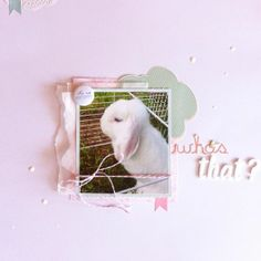 """A layout about our rabbit """"Penner"""" #scrapbooking"""