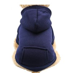 Fashion Focus On New Winter Dog Hoodie Sweaters with Pockets Cotton Warm Dog Clothes for Small Dogs Chihuahua Coat Clothing Puppy cat Custume (Navy, X-Large) - Dog Store Teddy Clothing, Dog Clothing, Chat Lion, Puppy Coats, Pet Dogs, Pets, Pet Puppy, Doggies, Puppy Clothes