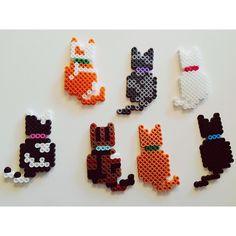 Cats perler beads by lexiscraftstuff