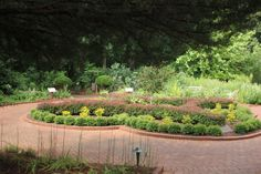 This is fun! Check out the Physics Garden at the State Botanical Garden of Georgia #AtlantaLandscaper