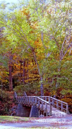 #Wisconsin #Petrifying #Springs #Park #Kenosha #county #Autumn #nature #colors #photography #KayNovy #kkphoto1