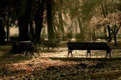 Craiova.  #Romania #Travel Romania Travel, Outdoor Furniture, Outdoor Decor, Park, Backyard Furniture, Lawn Furniture, Outdoor Furniture Sets