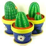 ... off to find some nice rocks to start making these lovely cacti!