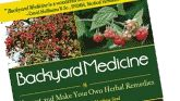 10 Common Weeds that Can Heal You   The ReadyBlog