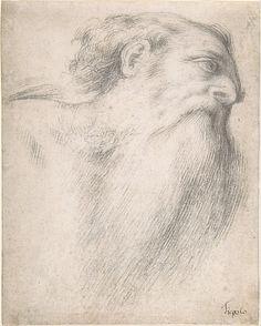 Head of a Bearded Man  Lorenzo Lotto  (Italian, Venice ca. 1480–1556 Loreto