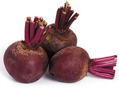Find Beet Roots Isolated On White Background stock images in HD and millions of other royalty-free stock photos, illustrations and vectors in the Shutterstock collection. Nutrient Rich Foods, Brain Food, Superfoods, Beets, Cravings, Food And Drink, Health Fitness, Low Carb, Fruit