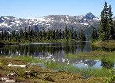 Information on the best things to do in the in the North Central Region. There is some great hiking, kayaking and boating. Elk River, River Trail, Visit Vancouver, Vancouver Island, Great Places, Places To See, Deer Farm, Forest Trail, Mount Washington
