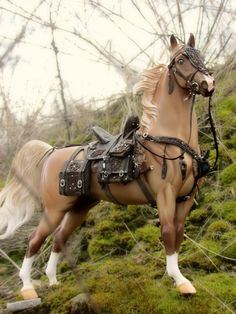 If anyone knows who made the beautiful tack on this model please post in the comments!