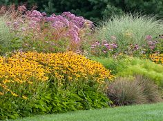 garden bed with perennials, grasses