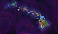 Science Graphic of the Week: Mesmerizing Map Tracks Whales Swimming Around Hawaii BYBETSY MASON 05.08.14