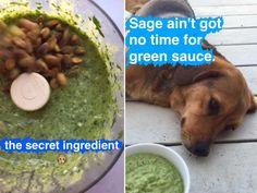 Snapchat for Magic Green Sauce