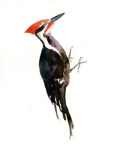 PILATED WOODPECKER by DIMDI Original watercolor painting 8X10inch(Vertical orientation)
