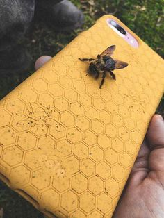 Save the Bees Pela Case is the world's first compostable phone case. Our exclusive Flaxstik material is made from plants and will break down in only a few months in a compost environment. Compost, Cute Baby Animals, Funny Animals, Save The Bees, Mellow Yellow, Fur Babies, Cool Pictures, Finding Yourself, Iphone Cases