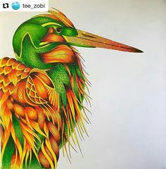 Especial Garça #Repost @tee_zobi ・・・ Animal Kingdom No.2 #animalkingdom  #animalkingdomcolouringbook  #milliemarotta  #milliemarottafans