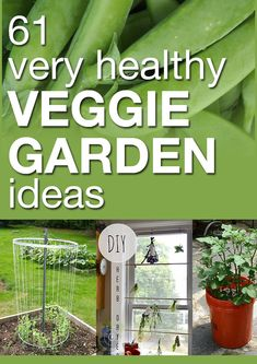 61 very healthy veggie garden ideas. Great ideas including hoop houses, starting seeds, storing produce, trellises, growing tips, etc.