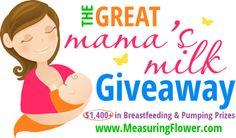 Breastfeeding Prize Pack Group Giveaway 11/04 - Gator Mommy Reviews #breastfeeding #breastisbest #newmom #baby #giveaway