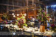 Hurd Orchards Wedding Photographer | Sue Egan Photography Blog
