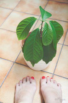 TU STOJIM Flip Flops, Women, Fashion, Moda, Fashion Styles, Beach Sandals, Fashion Illustrations, Slipper, Reef Flip Flops