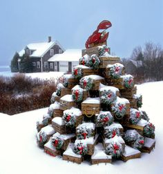 Maine Lobster-trap christmas tree