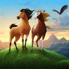 Stallion of the cimarron is an american animated film produced by. Free online movies spirit stallion of the cimarron. Wild stallion is captured by humans and slowly loses the will to resist training. Spirit Horse Movie, Spirit The Horse, Spirit And Rain, Spirit Film, Horse Background, Horse Movies, Free Pc Games, Wild Mustangs, Movie Photo
