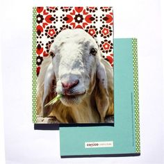 Cuaderno Oveja