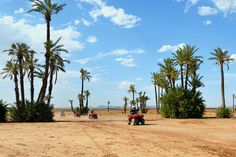 Camel and Quad Biking Tour from Marrakech - TripAdvisor