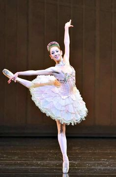ZsaZsa Bellagio: Ballet Beautiful