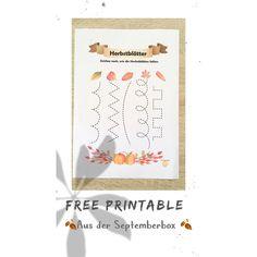 """My Fun Box on Instagram: """"🖨Free Printable🖨 Heute etwas aus dem Herbst und der letzten Septemberbox🍂 eine tolle Übung zur Schulung der Feinmotorik und…"""" Freebies, Free Printables, Education, Box, Instagram Posts, Fine Motor Skills, Amazing, Fall, Snare Drum"""