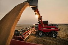 Case IH 9240 wheat harvest