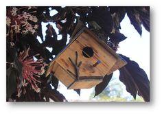 - Casa para passarinho  - Produto totalmente artesanal em madeira de pinus com pintura e cobertura em verniz marítimo na parte externa.  - Telhadinho removível para observação do ninho.  - Podem ser colocadas em varandas, quintais, viveiros, beiral de telhados e em jardins.    Nossas casinhas (ni...