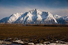 Palmer, Alaska Pioneer Peak from the Potato Field /Panoramio - Photos of the World