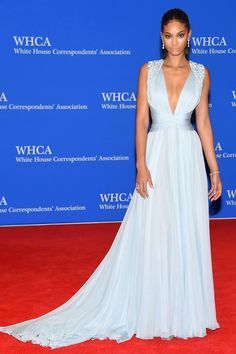 Chanel Iman was flawless in a Zuhair Murad Couture gown at the 2015 White House Correspondents' Dinner.