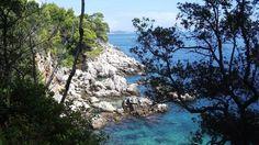 Lokrum Island Tourism, Croatia - Next Trip Tourism Croatia Tourism, Lokrum Island, River, Nails, Places, Outdoor, Finger Nails, Outdoors, Lugares