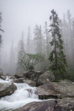 90377: Studený potok by piotr pawelczyk