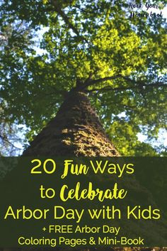 How do you celebrate Arbor Day with kids? Check out these 20 fun ideas plus learn about an amazing resource for a virtual field trip on Arbor Day! Earth Day Activities, Spring Activities, Hands On Activities, Science Activities, Educational Activities, Science Resources, Tree Study, Virtual Field Trips, Arbour Day