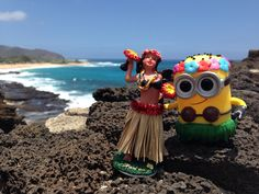 My Hula Minion Funko Pop taking hula lessons by the ocean.