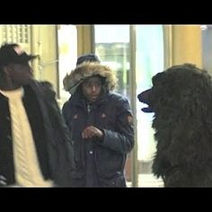 NEW bear suit prank with Roman Atwood