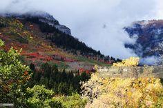 Sundance Mountain Resort In Fall Fall Autumn Background Photography #Ad, , #Aff, #Resort, #Mountain, #Sundance, #Fall Business Powerpoint Presentation, Mountain Resort, Autumn, Fall, Mountains, Nature, Photography, Travel, Photograph