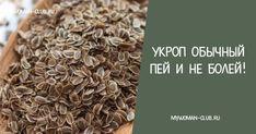 Чтобы забыть о давлении нужно взять горсть семян укропа. Через неделю будете здоровы! |