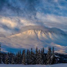 Mount Rainier, Mountains, Nature, Travel, Shopping, Summer, Naturaleza, Viajes, Destinations