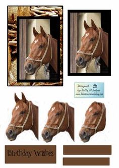 just a beautiful horse on Craftsuprint designed by Sally McIntyre - just a beautiful horse - Now available for download!